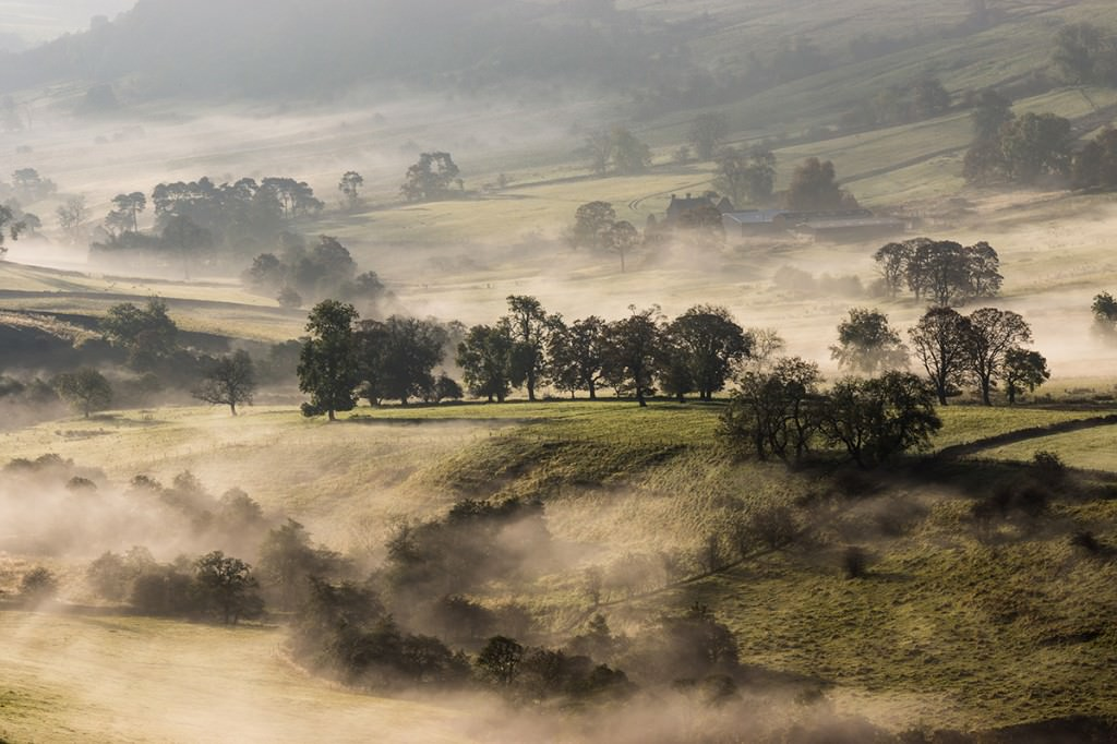 Dove Valley Mist - Peak District