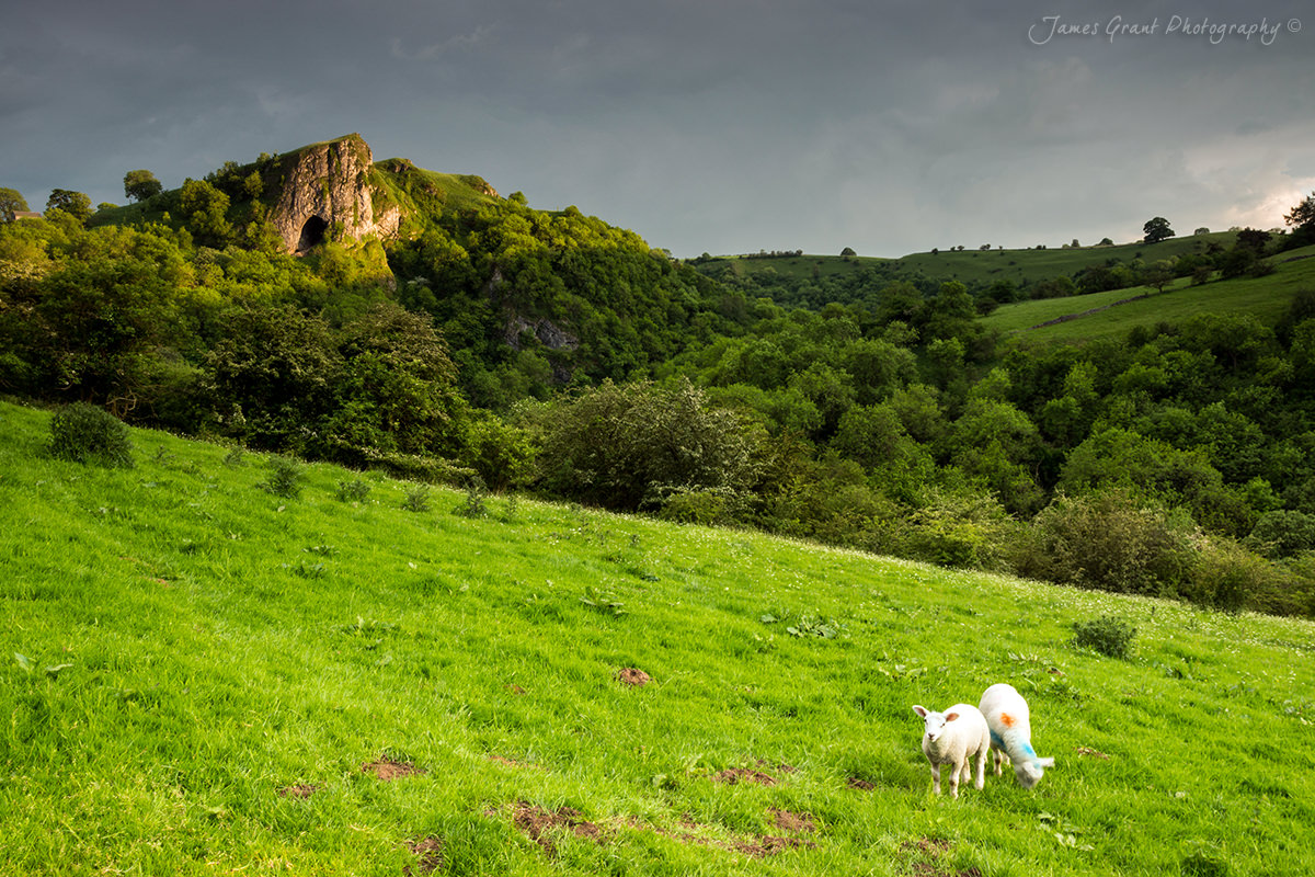 Thors Cave - Peak District Photography