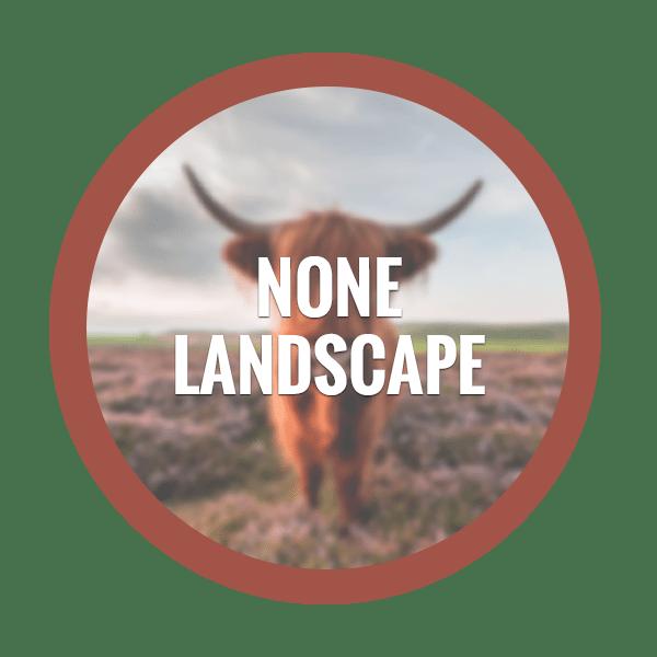 Non-Landscape Photography